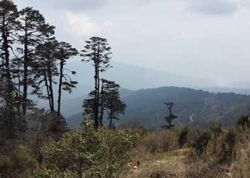 views-of-bhutan