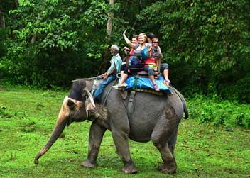 elephant-safari-tour-in-nepal